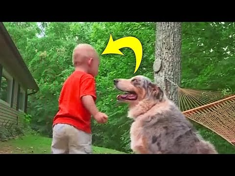 This Toddler Was Playing In The Dirt When The Family Dog Suddenly Charged At Him