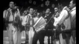 faramita lambru la acordeon muzica lautareasca cu lautarii vechi