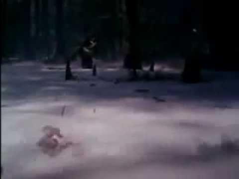 Swamp Thing (1982) Trailer