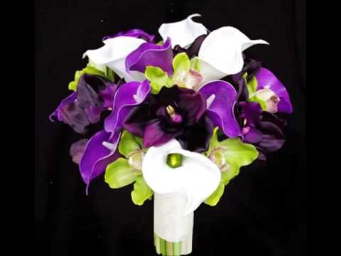 purple-and-green-orchid-bouquet-collection-of-pictures