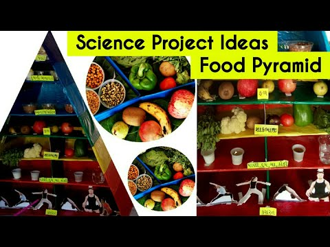 School Project Food Pyramid , Health and nutrition , Healthy Eating , Project on nutrition Gujarati