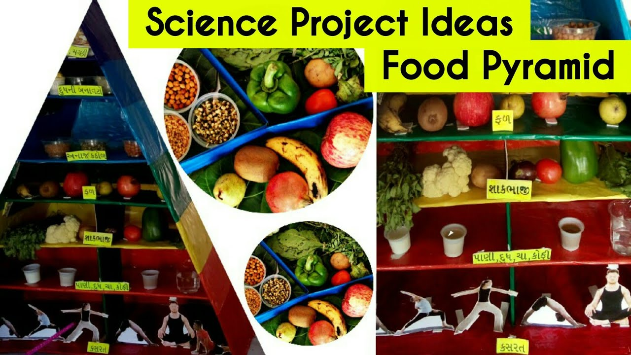school project food pyramid health and nutrition healthy eating project on nutrition gujarati [ 1280 x 720 Pixel ]