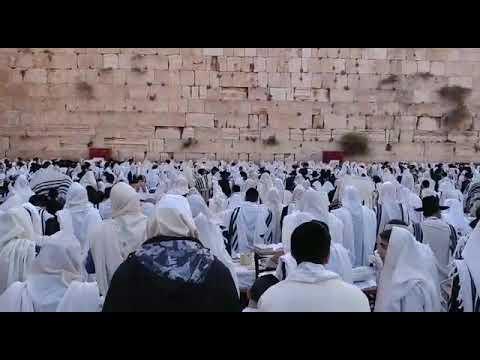 """ברכת הכוהנים שחרית בכותל המערבי א' דחול המועד פסח בכותל המערבי התשע""""ח cohnim blessing kotel Passover"""