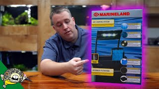 A Great Tank from Amazon?! The MarineLand 5 Gallon Portrait Tank