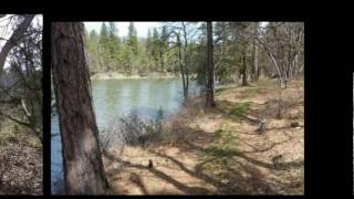5 Acres Shasta County Real Estate For Sale - Fall River Mills, CA