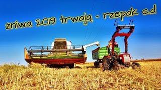 ŻNIWA 2019 - DALEJ RZEPAK (opis⬇️)