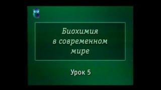 Биохимия. Урок 5. Значение ферментов. Углеводы: моносахариды
