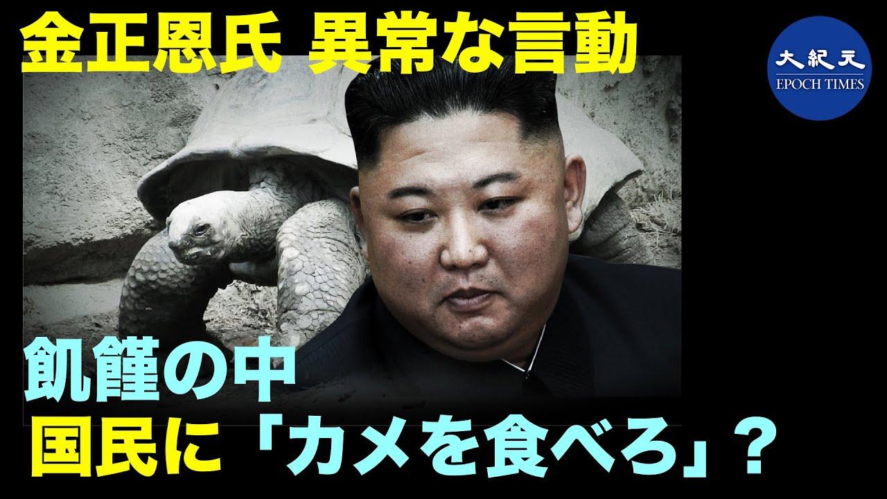 北朝鮮の1000万人が飢えている | 金正恩氏は「カメを食べろ」