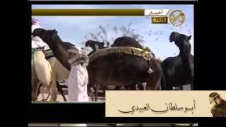 سفر الدغيلبي في منقيه الشيخ ناصر ابن سعيد ابن مرسان اداء حسين الكوري ومحمد ال نجم