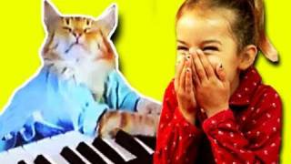 KIDS REACT to Keyboard Cat thumbnail