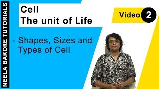 Cell - The unit of Life - Shapes, Sizes and Types of Cell