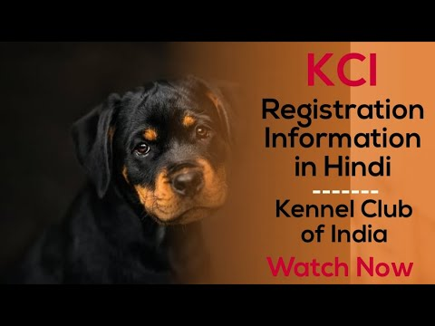 Kci registration information in hindi - kennel club of india