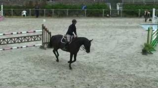 ♥ Parade A La Cour- jumping horse  by Diamant de Semilly
