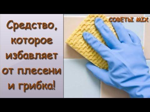 разных бактерий и грибка абстрактный