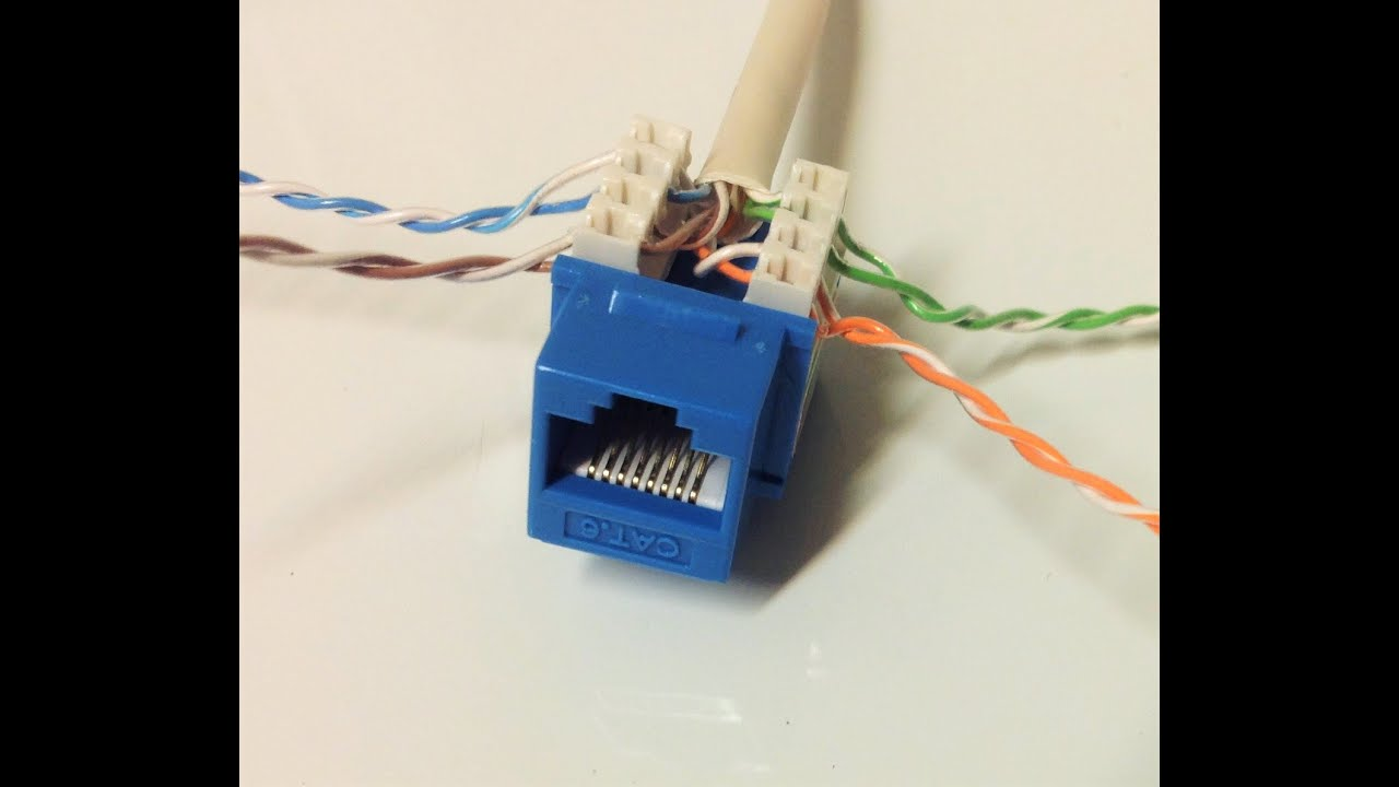 Connect Cat6 cable to Jack  YouTube