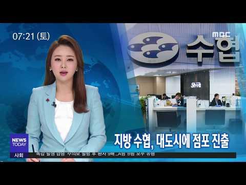 수협금융 도시권으로-R (181229토/뉴스투데이)