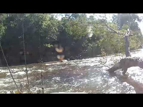 Pascoe River Crossing