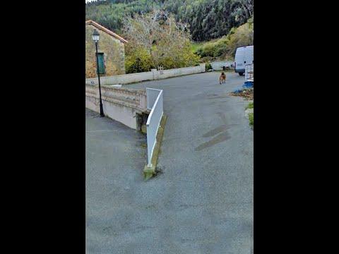Una mujer es atacada por un perro en Allendelagua, localidad del municipio de Castro Urdiales