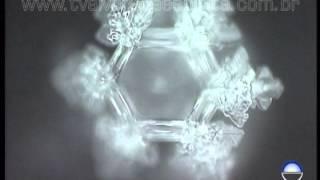 Masaru Emoto - Moléculas de água sob efeito da música thumbnail