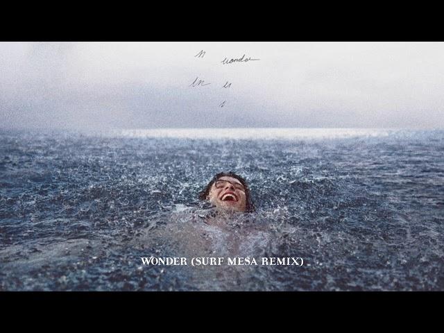 Shawn Mendes - Wonder (Surf Mesa Remix / Audio)