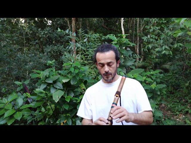 Flauta Nativa River Cane G#