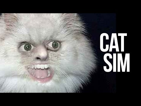 Thumbnail: Cat Simulator.