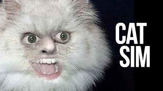 Cat Simulator.