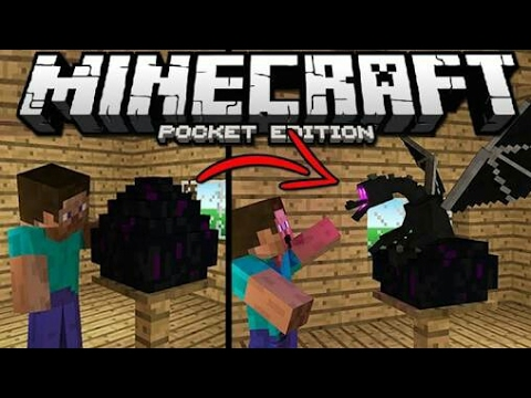 how to hatch ender dragon egg in minecraft pe youtube