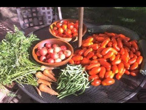 Backyard Organic Garden
