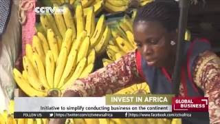 Invest In Africa: Initiative to simplify conducting business on the continent