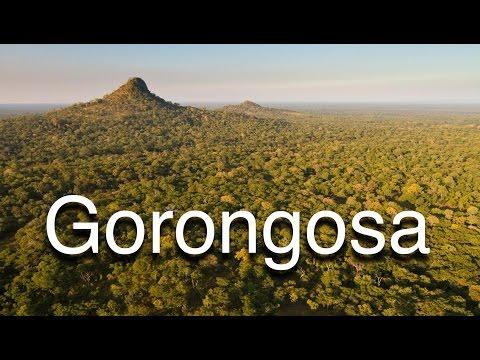 Gorongosa thumbnail