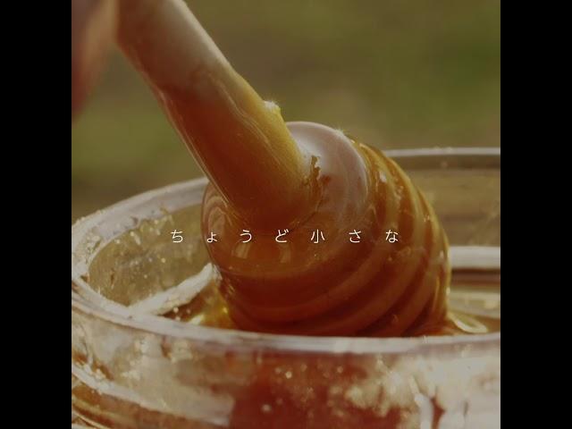 スプーン一杯の蜂蜜にはミツバチの一生が詰まっています