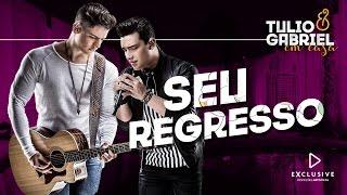 Baixar Tulio e Gabriel - Seu Regresso (DVD Em Casa)