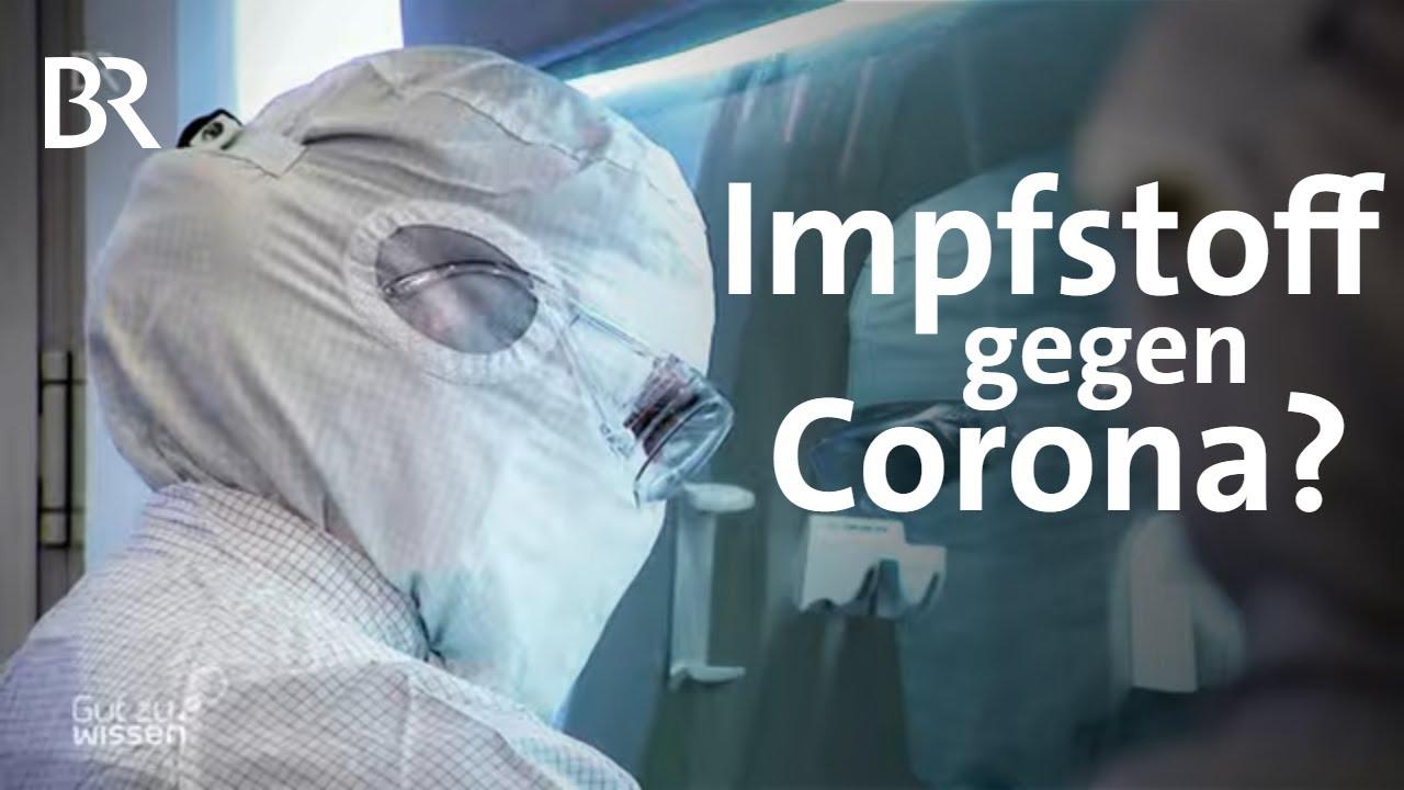 So Wird Ein Impfstoff Gegen Covid 19 Entwickelt Corona Update Gut Zu Wissen Br Youtube