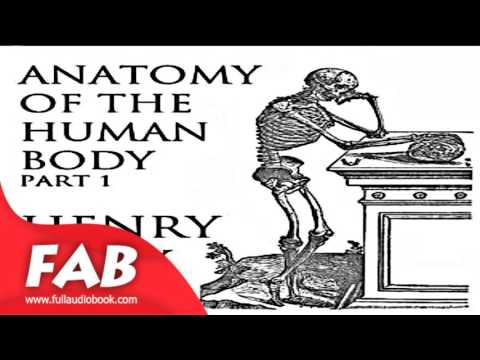 Anatomy of the Human Body, Part 1 Gray's Anatomy Part 1/2 Full Audiobook by Henry GRAY
