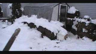Winter Chicken House Tour Part 1.wmv