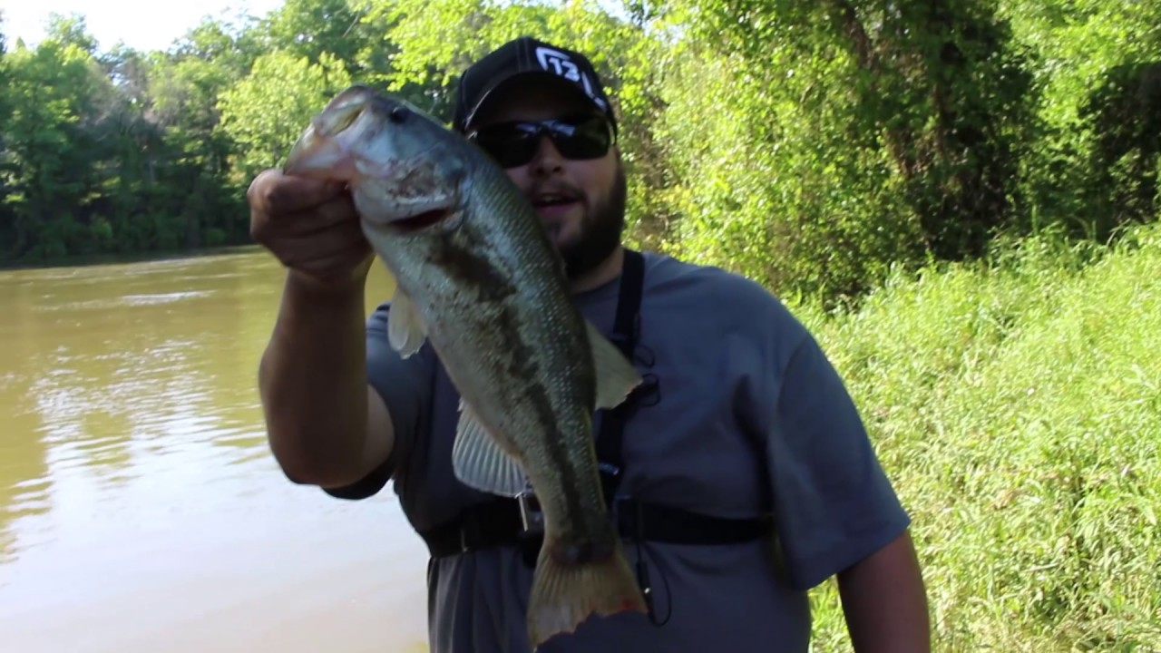Fishing highs and lows draggshot 39 s first wacky worm bass for Wacky worm fishing