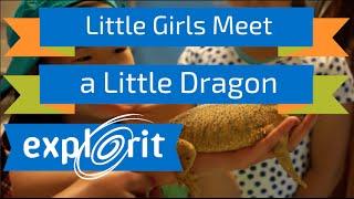 Little Girls Meet a Little Dragon!