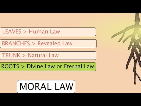 """Human Law & Divine Law"" – Ethics, Video 9"