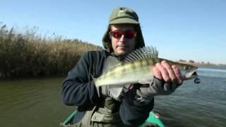 Диалоги о рыбалке. Астрахань