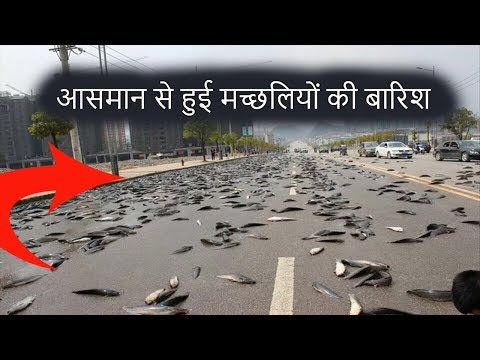 Fish Raining From The Sky In India | Blood Rain In Kerala | Tech & Myths