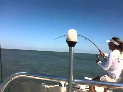 Tarpon Fishing Videos - Sexy Women in Florida - YouTube