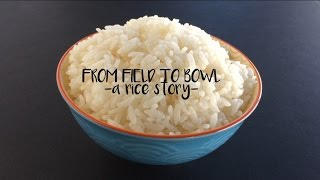From Field to Bowl ~A Rice Story~