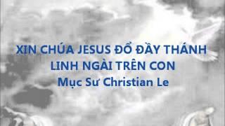 XIN CHÚA JESUS ĐỖ ĐẦY THÁNH LINH NGÀI TRÊN CON - MS Christian Le
