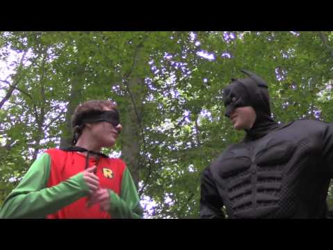 The New Adventures of Batman and Robin