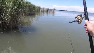 Рыбалка на реке Маныч Ловля с лодок на поплавок
