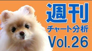 FX 週刊チャート分析(ユロ円)Vol.26 チャートがあきらめ顔になった時が絶好のエントリーポイント。
