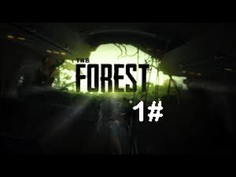 ►CZ Let's Play The Forest w/Tobee 369 | #1 Díl Část 2 |