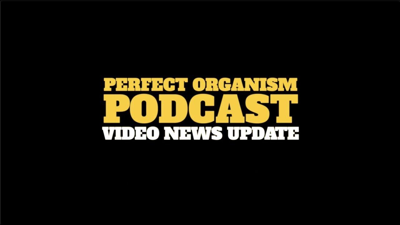 Blog Perfect Organism