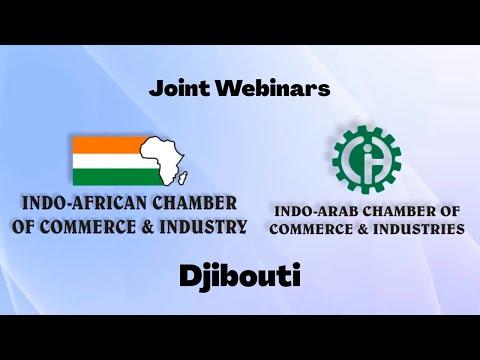 Africa Connect  - Djibouti Webinar